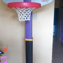 Adjust baskekt ball purple black